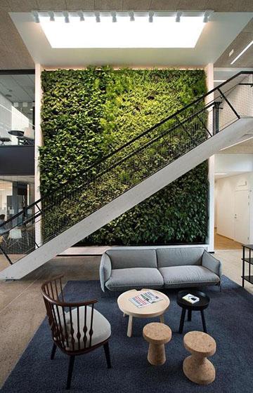 Фитостена - вертикальное озеленение в интерьере